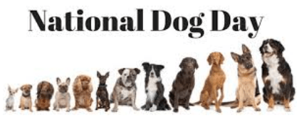 Best Dog Breed to Own According to Data